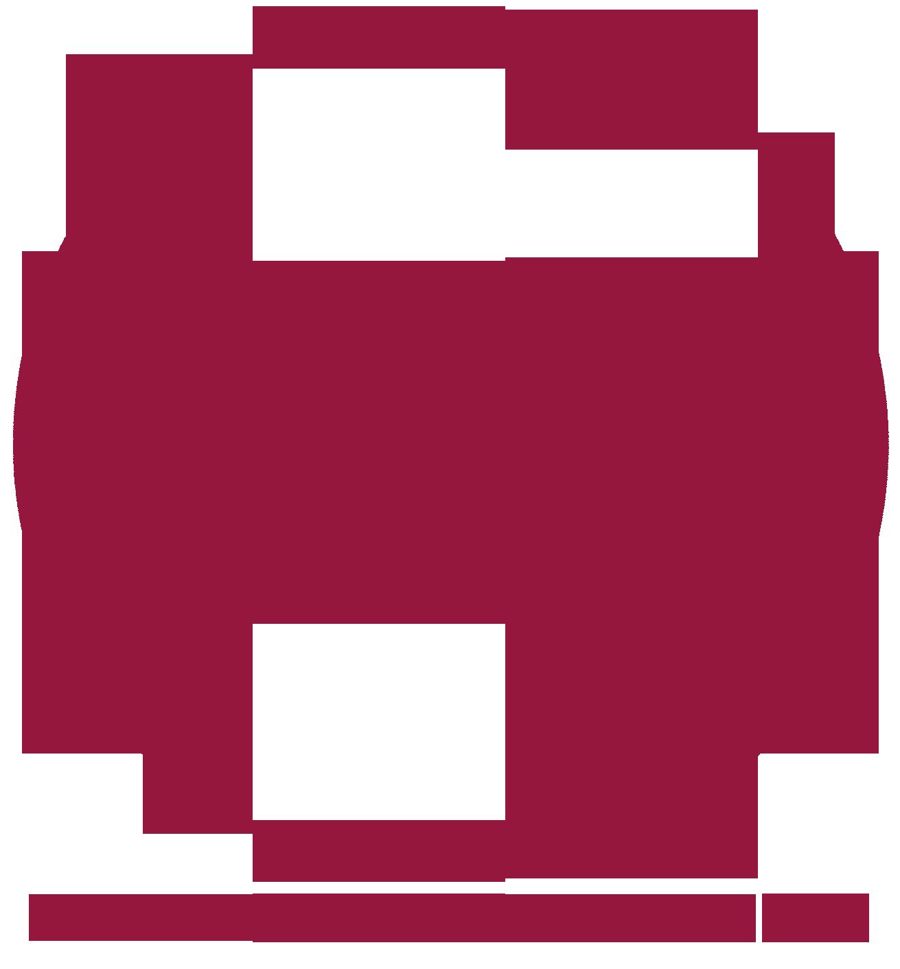 Vereinigung Alte Musik